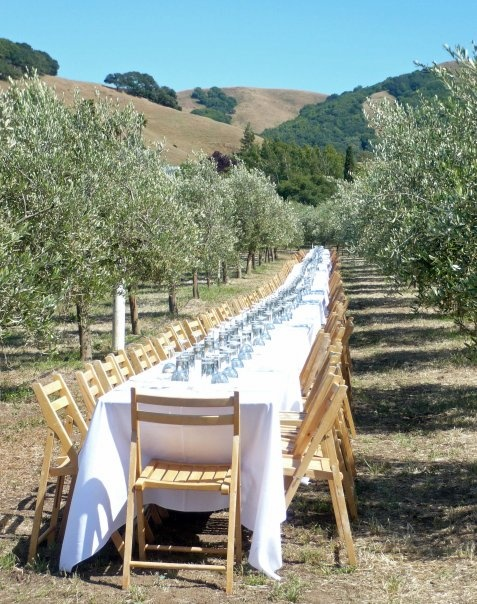 18 best images about Winemaker Dinners on Pinterest Napa valley