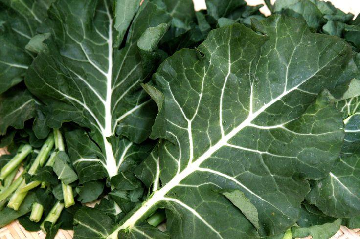 Inaugurando a série de artigos sobre como preparar legumes, aqui está um dos meus vegetais preferidos: couve. O acompanhamento típico do nosso prato nacional, a feijoada, merece ser degustado com m…