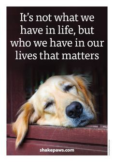 """""""It's not what we have in life, but who we have in our lives that matters."""""""