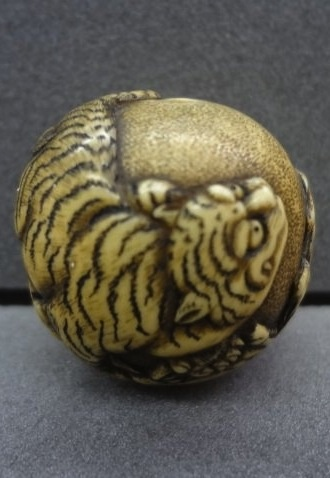 Tiger on rocks. Japanese netsuke, made of ivory, by Mitsuhiro 光廣