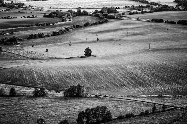 Shot taken in the český ráj region. The pattern on the fields and the scattered trees and then just one tree all by itself there just where it's right to be.  I truly believe this is pure visual poetry. #landscapephotography #blackandwhite #landscape #instagood #instapic #nature #rurallife #českýráj #český #czechia #monochromatic #poetry #share #etsyshop #etsyseller #etsy #trees #lonesurvivor #silence #thoughts #thoughtoftheday #thoughtfulmoments #czechrepublic #fotograf #patterns #life…