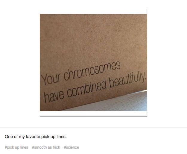 Love how you look in those genes, babe. | 25 Times Tumblr Had The Best Pick Up Lines
