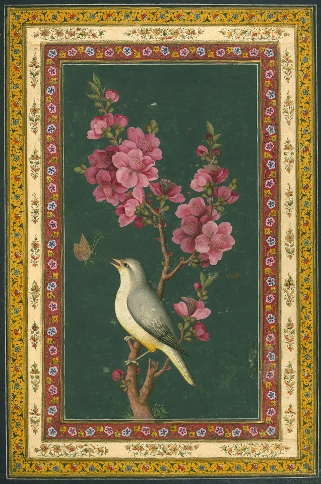 bird sitting on a flowering branch Label: This painting is attributable to the late Zand or early Qajar period (twelfth century AH / eighteenth CE or thirteenth century AH / nineteenth CE