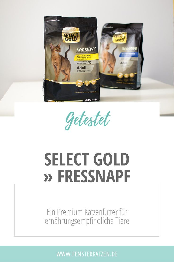 Select Gold » Fressnapf – Fensterkatzen   Katzenblog