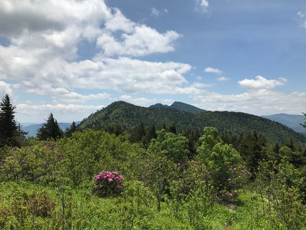 And pictures of black mountain range nc sanchez
