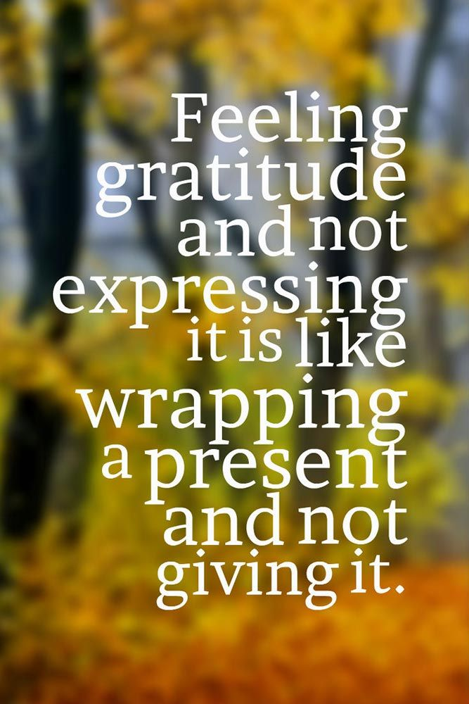 Thankful Quotes Inspirational: 25+ Best Thanksgiving Quotes On Pinterest
