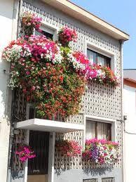 varandas floridas em barcelos - Pesquisa Google