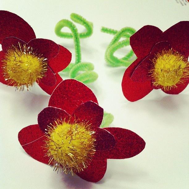 Poppies... Aren't Poppies a veteran's say thing?: Schools Stuff, Aren T Poppies, Social Studies