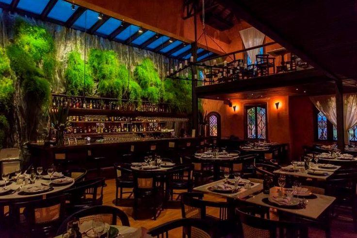 Pizzaria Veridiana - Belíssimo salão principal com seu bar e jardim vertical nos fundos.