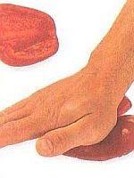 vcielkaisr-mojerecepty: Príprava papriky