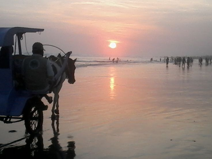the horse is heading to sunset.. keep moving, keep moving! -a story in Parangtritis beach-