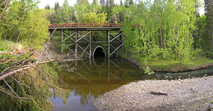 Mill Creek Ravine in Edmonton, AB