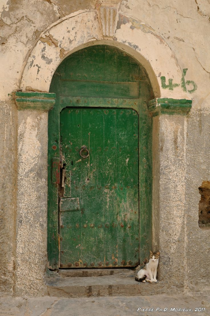 17 Best Images About Moroccan Doors On Pinterest