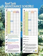 Use our printable reef tank maintenance schedule to stay on top of all your saltwater reef tasks.