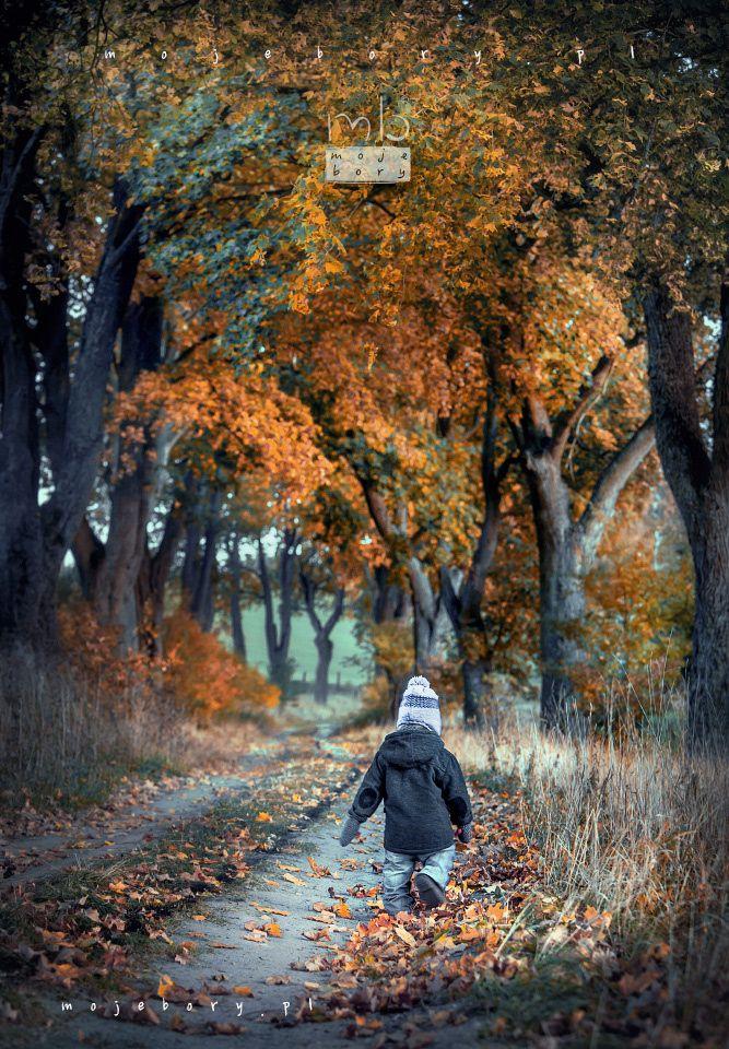 Bory Tucholskie by Moje Bory on 500px