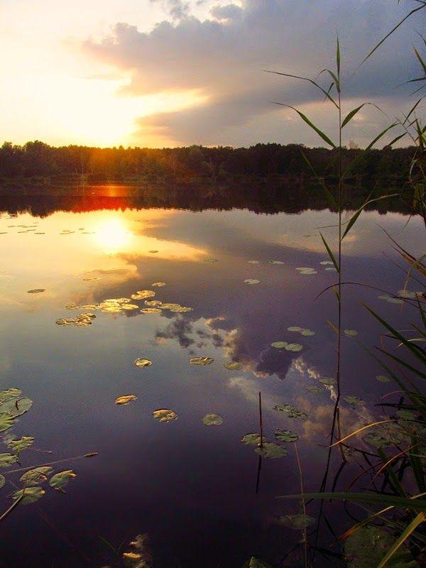 piękny zachód słońca nad stawem w Miechowicach | Bytom | fot. Kris Beskidzki | szlakiibezdroża.blogspot.com