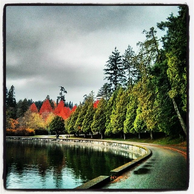 Trolley tour and horse drawn carriage rides in Stanley Park