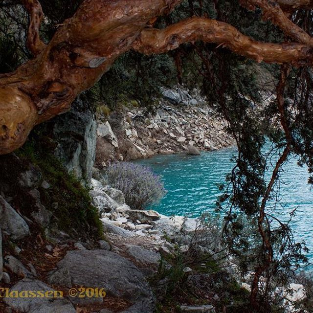 Overhanging colours #igersperu #peru #caraz #huandoy #paron #huascarannationalpark #cordillerablanca #adventure #trekking #natgeotravel #trlt #travel #colours #lakes #highaltitude #mountains #glaciallake