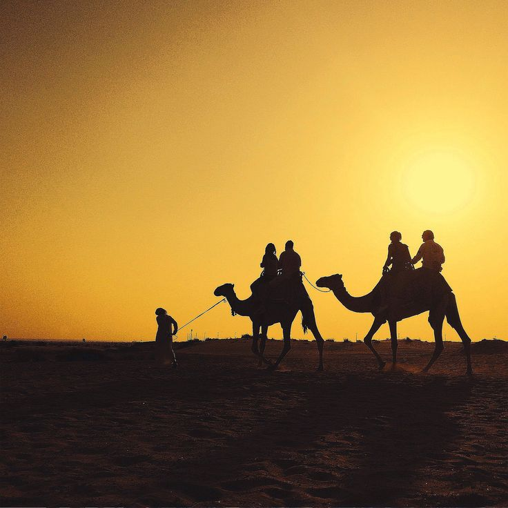 Desert Adventures is a leading Destination Management Company in the region, offering hotel bookings, airport transfers, travel packages, golf breaks, and a range of excursions including a romantic candlelight dinner in the middle of the desert.