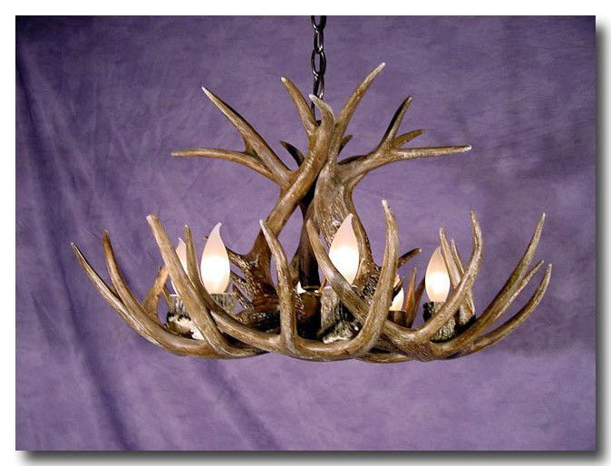Whitetail Deer Antler Chandelier with Six Lights