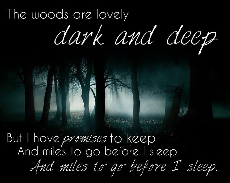 the woods are lovely dark and deep the woods are lovely