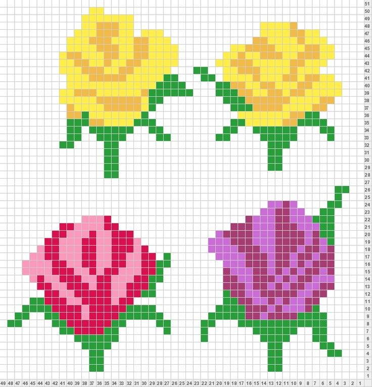 Flower chart - Roses