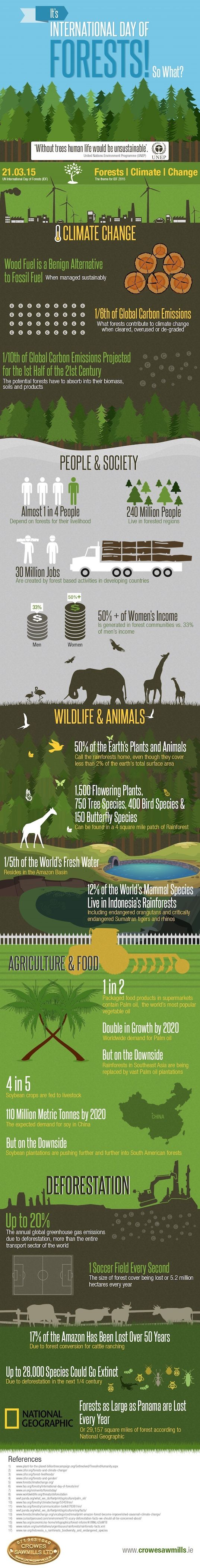 International Day of Forests, infographic, reader submitted content, Crowes Sawmills Ltd, forest facts, forests, trees, deforestation, climate change,