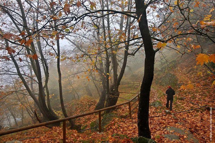 Γρεβενά: Πυκνά μεικτά δάση, ποτάμια, γεφύρια, κορυφές και οικισμοί συνδέονται με ένα πυκνό δίκτυο μονοπατιών μέσα στην άγρια φύση και τοποθετούν τα Γρεβενά στους κορυφαίους πεζοπορικούς προορισμούς.