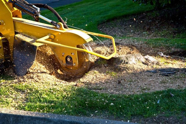 Now you can easily hire the tree services for #Stump #Grinding, #Tree_Removal, #Tree_Pruning, #Stump_Removal from #Tree_Raider. We are professional and Insured Tree service providers serving #Epping, #Castle_Hill, #Blacktown, #Ryde and #Baulkham_Hills; Call us now 0414 762 797 / 1300 723 996.