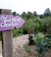 Follow Mullumbimby Community Garden on community engine for the $100K community giveaway. Each person who follows, raises $1 for this important cause. https://communityengine.com.au/organisations/4e5455dfd994270f18b94fa9