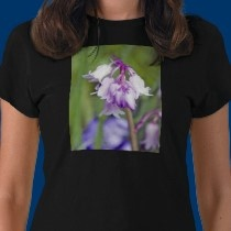 tee shirt  http://freedivingguide.com/