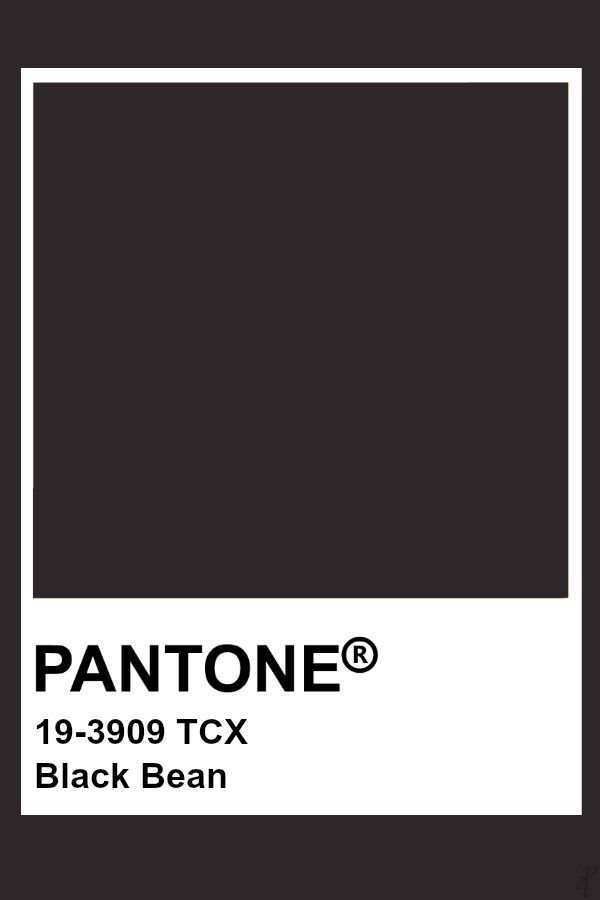 Pantone Black Bean Pantone Colour Palettes Dark Color Palette Pantone Color