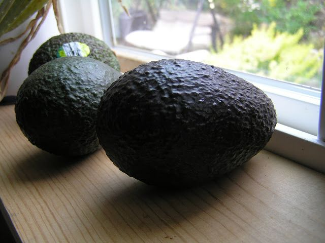 A Life Unprocessed: How To Save An Unripe Avocado That's Been Cut