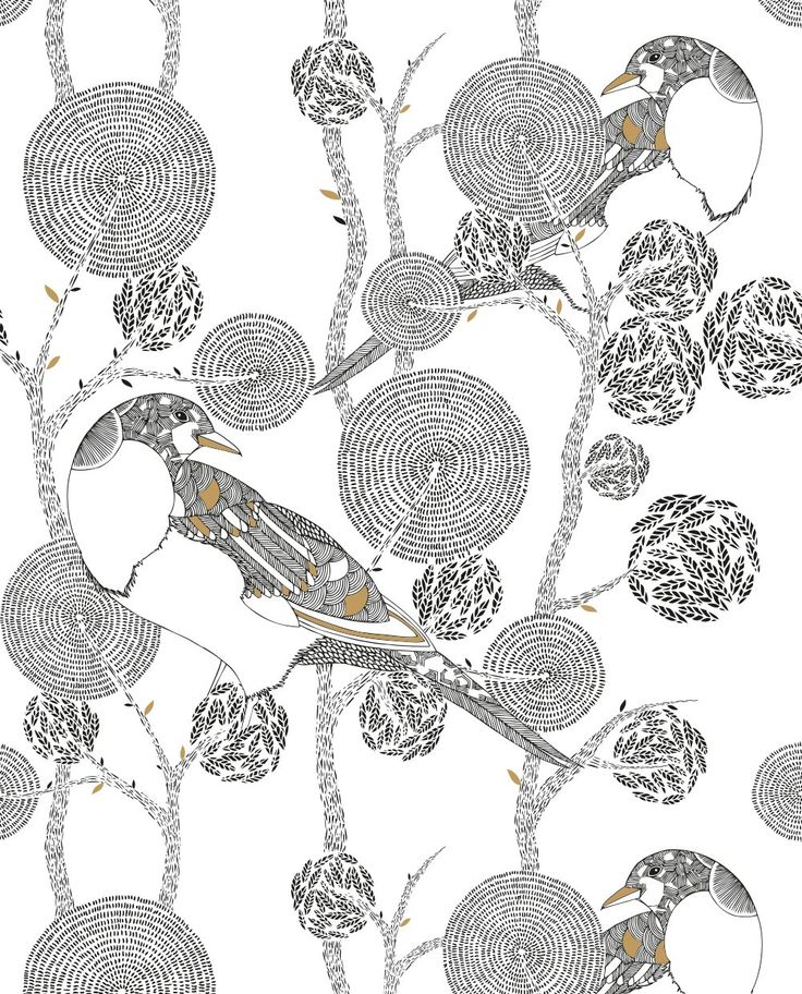 Millie Marottas Animal Kingdom Journal Set Amazoncouk Marotta Coloring BooksColoring