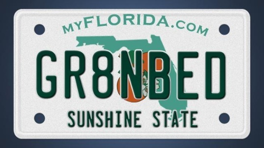 Model Of 60 banned license plates in Florida Inspirational - Elegant florida handyman license Top Design