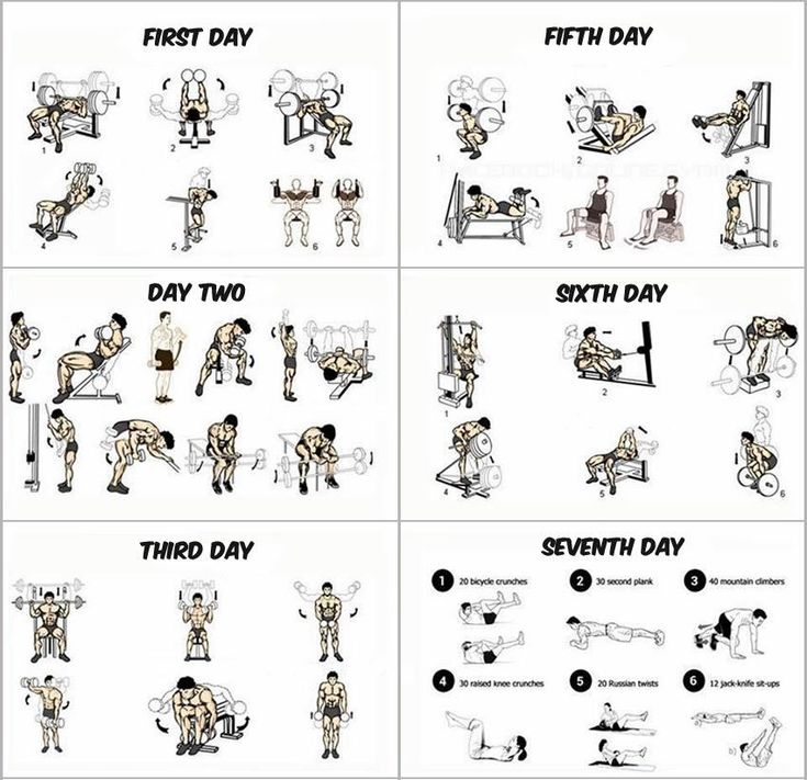1- This Insanity Workout Calendar takes 6 days and each day is dedicated for one group of muscles. They are divided as the following:chest musclesThe first dayhands musclesDay Twoshoulder musclesThird dayfor little