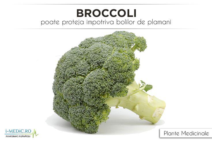 http://www.i-medic.ro/blog/broccoli-poate-proteja-impotriva-bolilor-de-plamani
