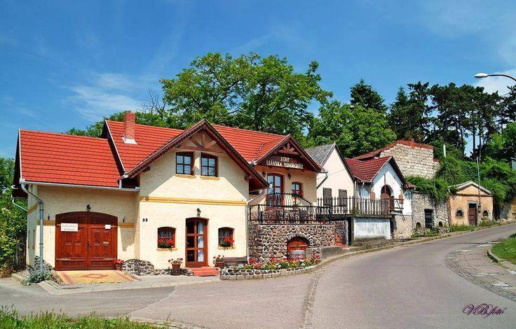 A Szépasszony-völgyben - Eger - Északi-középhegység- Hungary  fotó Vámossy Béla