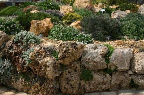 альпийская горка из искусственного камня: 15 тыс изображений найдено в…