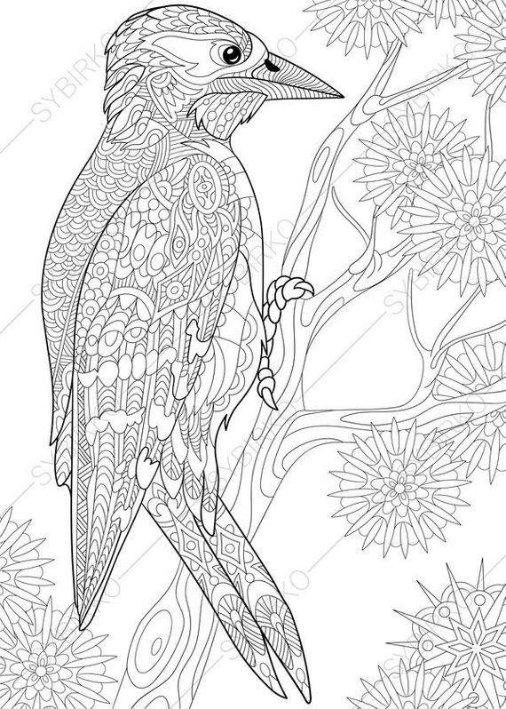 Coloring pages for adults. Woodpecker. Adult coloring ...