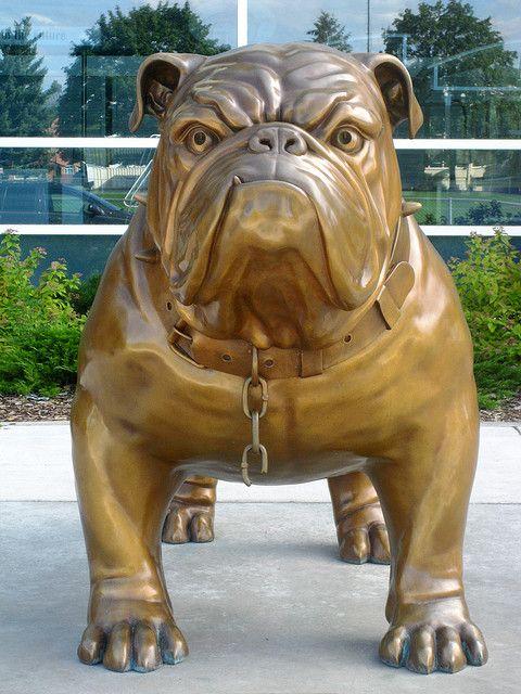 Bulldog Sculpture Spike, Gonzaga University, Spokane WA