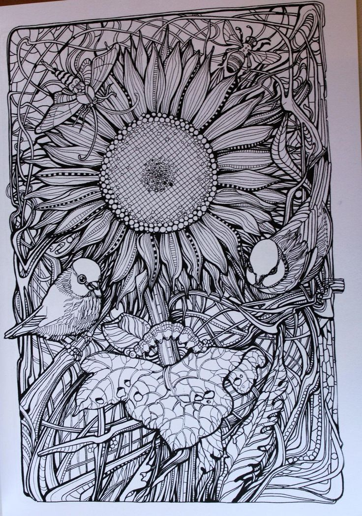 1188 Best Coloring Books For Adults Images On Pinterest