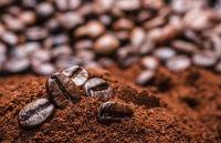 Trên thị trường nông sản hôm nay (27/9), giá cà phê giảm nhẹ vì robusa thế giới đi xuống. Trong khi đó, giá hồ tiêu tiếp tục xu hướng đi ngang.