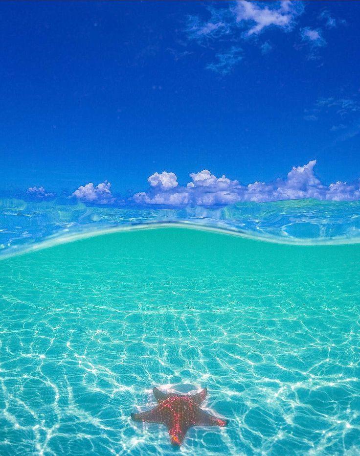 25 Best Ideas About Grand Cayman On Pinterest Cayman Islands Snorkeling A