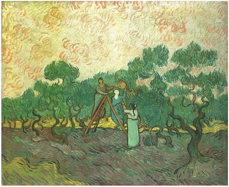 Olive Picking Vincent van Gogh Painting, Oil on Canvas Saint-Rémy: December, 1889 The Metropolitan Museum of Art New York, New York, United States of America, North America F: ;655, ;JH: ;1869