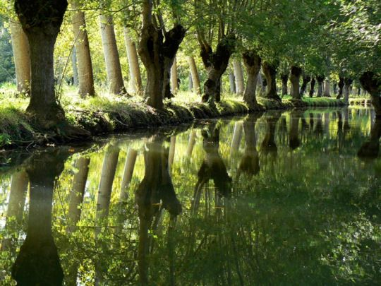 Le Marais Poitevain is one of the most beautiful canals in the heart of France. It is still a relatively unknown - and thus peaceful - destination.