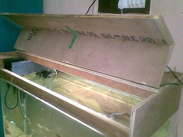 600 450 pixels aquarium pinterest for Fish tank hood
