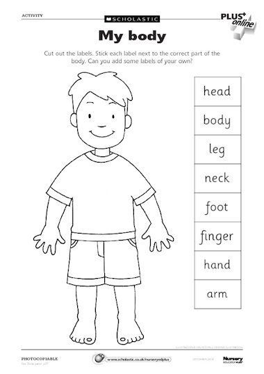 An activity sheet where children match the label to the