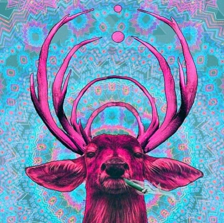 Trippy | Alice in wonderland mix | Pinterest | Awesome ...