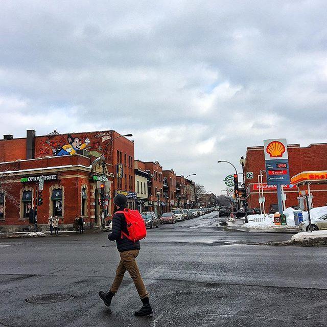 Mercredi midi #wenesday #ruenotredame #montreality #montreal #streetphoto #street #mtllife